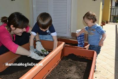 Come allestire un orto sul balcone