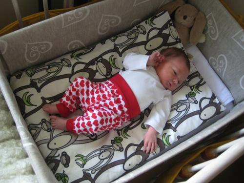 La scatola di cartone per un neonato italiano