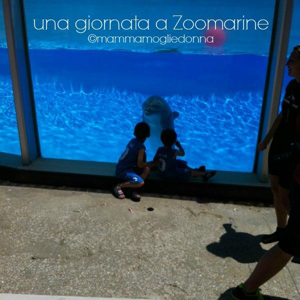 giornata a Zoomarine 6