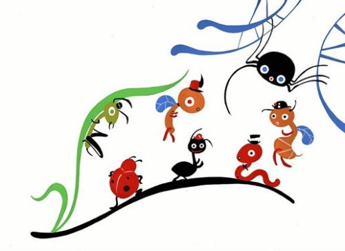 la formica e il passaparola