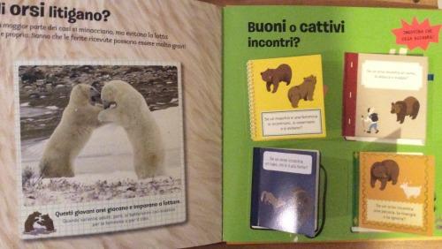 orso Editoriale Scienza 4