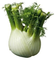 spesa dicembre verdura del mese finocchio
