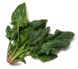 spesa dicembre verdura del mese spinaci