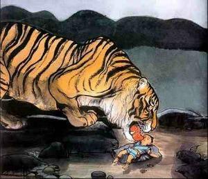 principe tigre