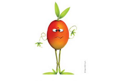 Foody Manghy mango