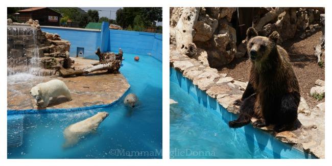 Zoosafari di Fasano con i bambini