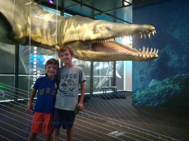 Paoleoaquarium in mostra a Genova il mare al tempo dei dinosauri 8